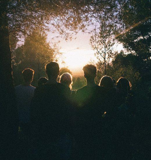 silhouette-of-group-of-people-between-tree-line-939328_liten